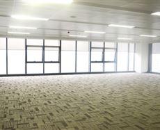 高新区高新南区锦城大道,金融总部商务11号地块