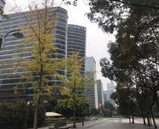 四川投资大厦