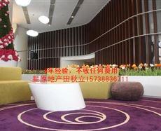郑东新区-新东站-绿地双子塔