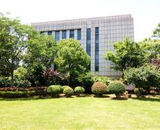 新城发展中心