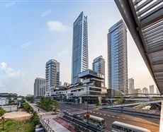 深圳湾社区中心路